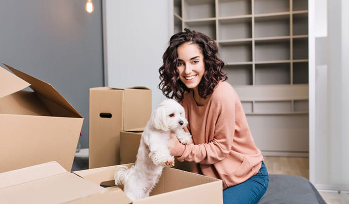 Expert Tips To Make Moving Convenient For Your Pets